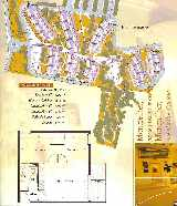 Site Plan and Lot Plan
